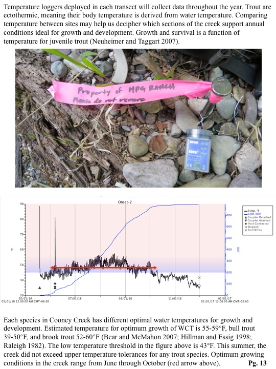 Temperature loggers deployed in each transect will collect data throughout the year. Trout are ectothermic, meaning their body temperature is derived from water temperature.