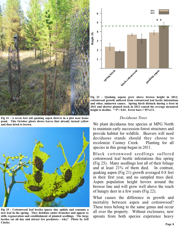 Deciduous Trees We plant deciduous tree species at MPG North to maintain early succession forest structures and provide...